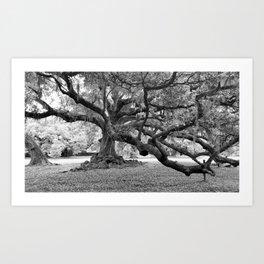 Tree of Life The De Bore Oak 1740 Art Print