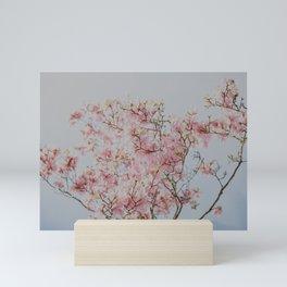 Pastel Pink Magnolias Mini Art Print