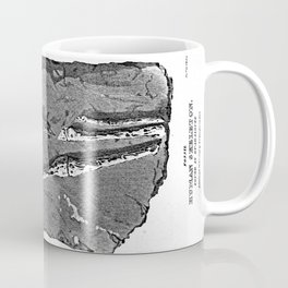 Fossil. Human Skeleton. Found in Guadaloupe Coffee Mug