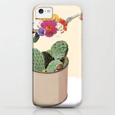 SUCCULENT iPhone 5c Slim Case