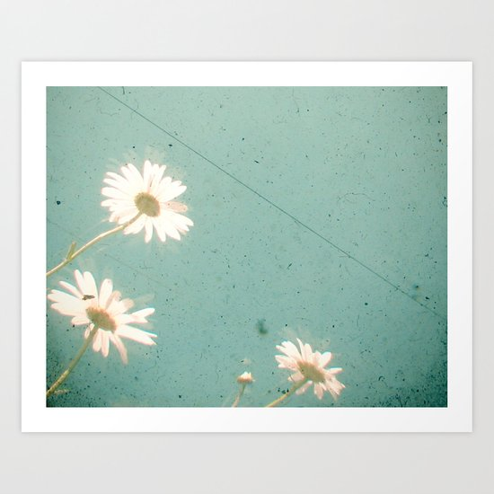 Three Daisies Art Print