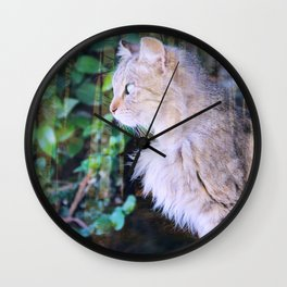 Cat to Dream With Wall Clock