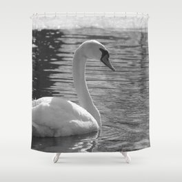 Black and White Swan Shower Curtain