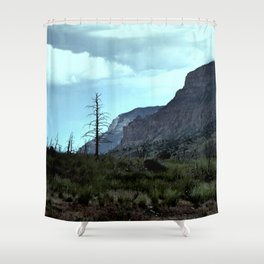 Graveyard of Trees Shower Curtain
