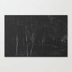 Dark Woodland Canvas Print