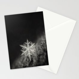 Tis the time of the year - VI.- Stationery Cards