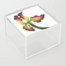 IRIS Acrylic Box