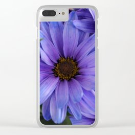 Purple Shaded Daisies Clear iPhone Case