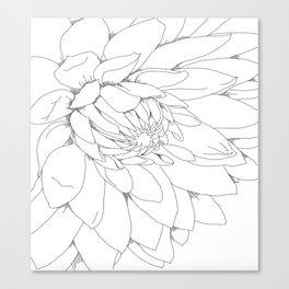 Dahlia Flower  Canvas Print