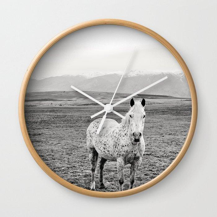 6882007918b Appaloosa Horse