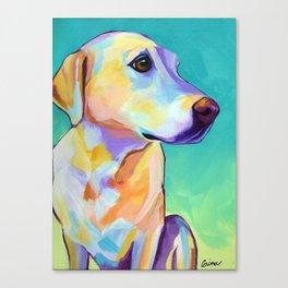 Ginger - Yellow Lab Canvas Print