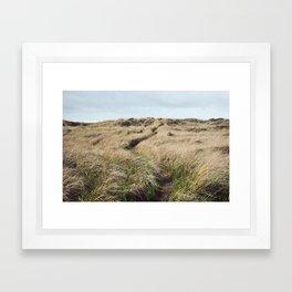 Oregon Dune Grass Adventure - Nature Photography Framed Art Print