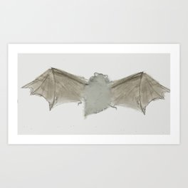 Little Brown Bat Art Print