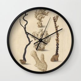 Naturalist Coral Wall Clock