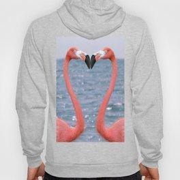 Flamingo Love Hoody