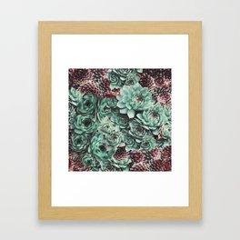 Succulent Sempervivum Plants Framed Art Print