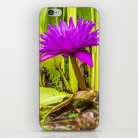 lotus flower iPhone & iPod Skins featuring Lotus  by Karl-Heinz Lüpke