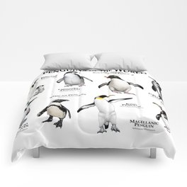 Penguins of the World Comforters