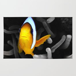 Colouful Clownfish Rug