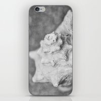 shell iPhone & iPod Skins featuring Shell by SilverSatellite