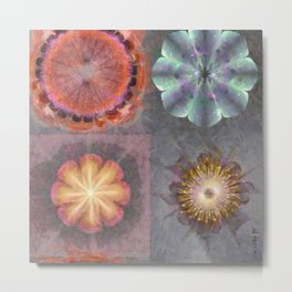 Absenters Intermixture Flower  ID:16165-065456-80170 Metal Print