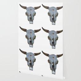 old bull skull Wallpaper