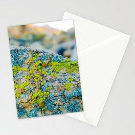 Hyper Lichen on Warm Desert Rock Stationery Cards
