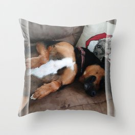 Firo is our family dog. He has a long history for one so young! Throw Pillow