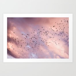 Birds and Sunset Skyscape | Sunrise | Pink Clouds | Unicorn Colours | Blush Pink Art Print