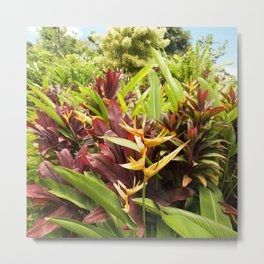 Red Ti Heliconia Ginger Tropical Garden Wailua Maui Hawaii Metal Print