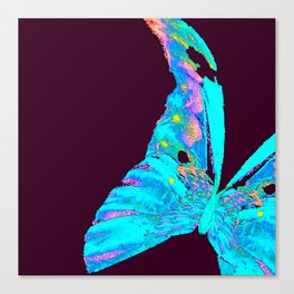Turquoise Butterfly On A Dark Background #decor #buyart #society6 Canvas Print