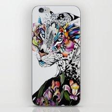 Alexandria iPhone & iPod Skin