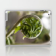 Christmas Fern Laptop & iPad Skin