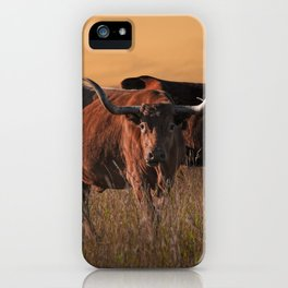 Texas Longhorn Steers on the Prairie at Sunset iPhone Case