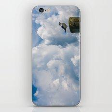 Apalachicola Seagull II iPhone & iPod Skin