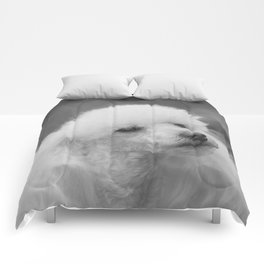 Toy Poodle Comforters