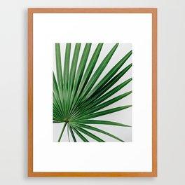 Palm Leaf Detail Framed Art Print