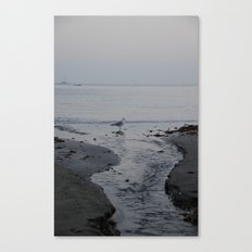 It all leads to the ocean.  Canvas Print