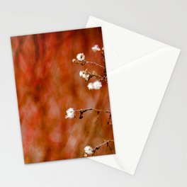 Red Hot Winter Stationery Cards