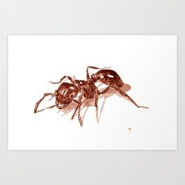 Ant Art Print