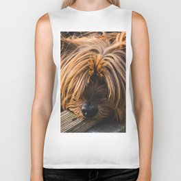 Yorkshire Terrier Biting Wood Biker Tank