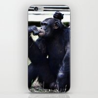 planet of the apes iPhone & iPod Skins featuring Social Apes by 100 Watt Photography