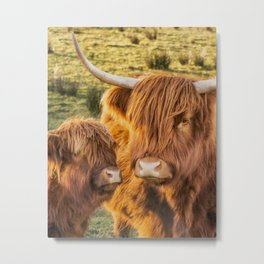 Mother and child. Highland Cows of Scotland....(heilan coo's) Metal Print