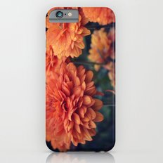 Sweet Orange Slim Case iPhone 6s