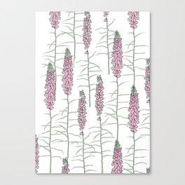 Flowery Pods Canvas Print