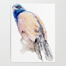 Watercolor Bird Painting Poster