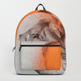 Busted 2 Backpack