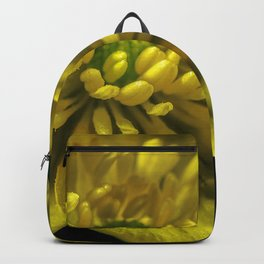 Buttercup Flower Close up Backpack