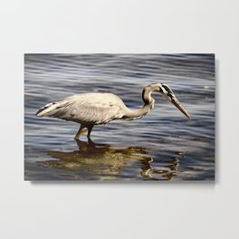 Well Now, They Say The Fishing Is Good Here... Metal Print