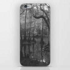 Florida Swamp iPhone & iPod Skin